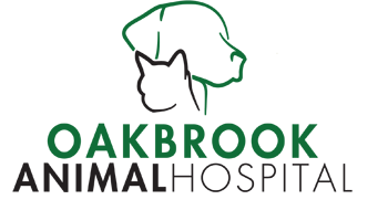 Oakbrook Animal Hospital